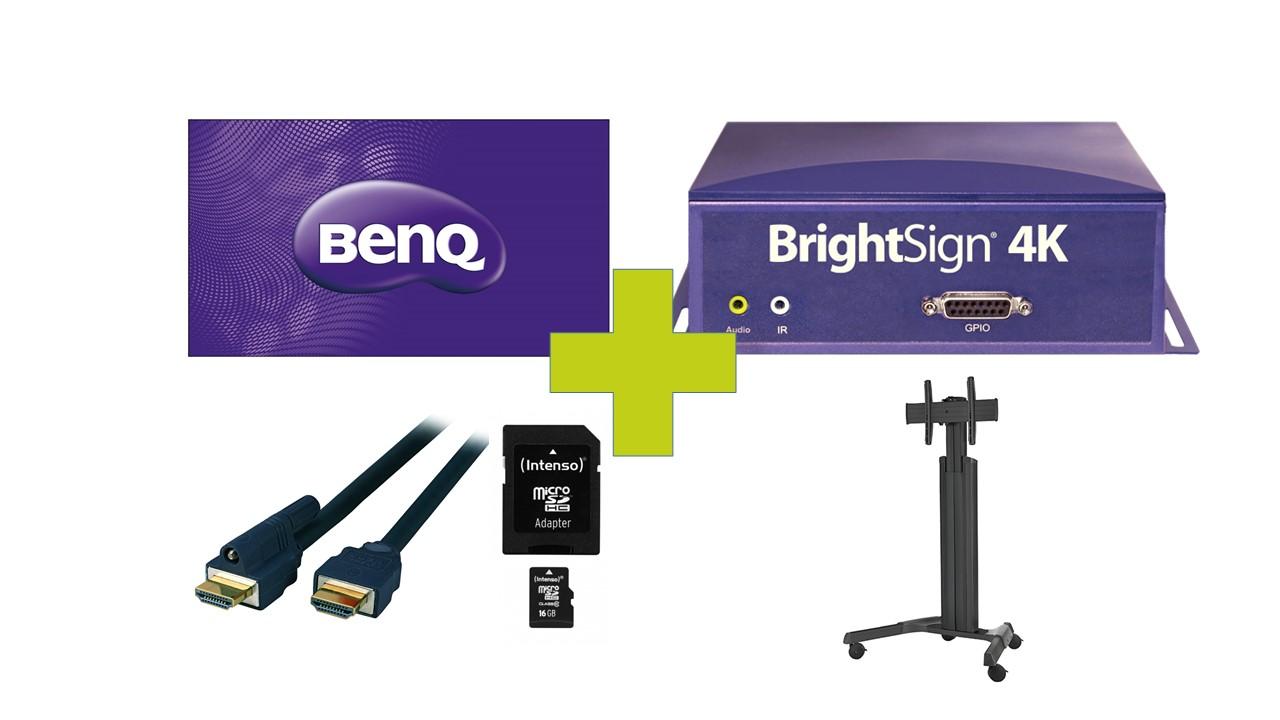 65 4K Digital Signage Bundle mit Rollgestell