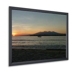 Projecta HomeScreen Deluxe