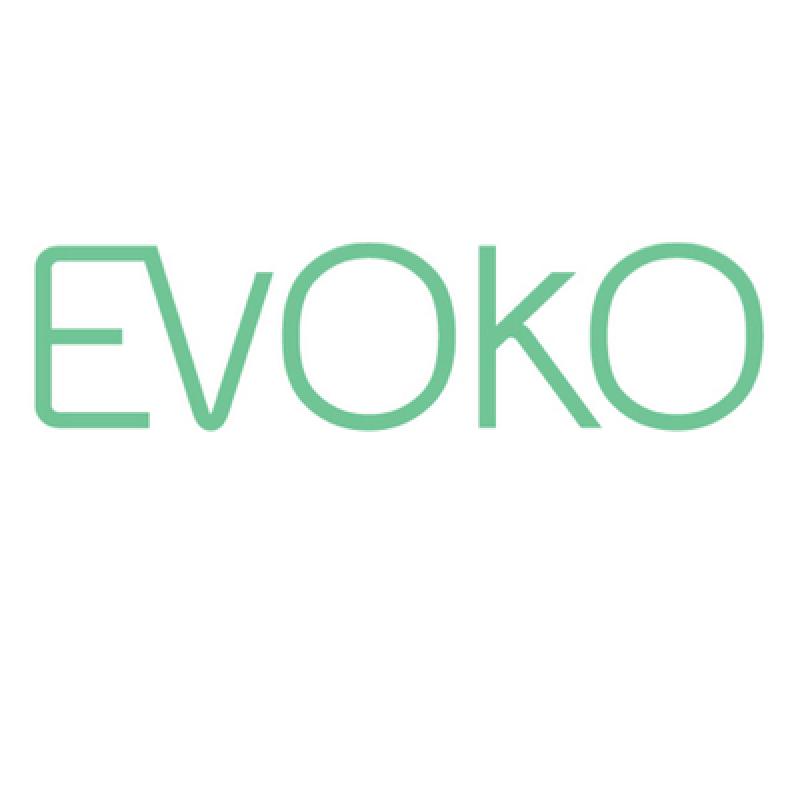 EVOKO 3.5 mm Audiokabel